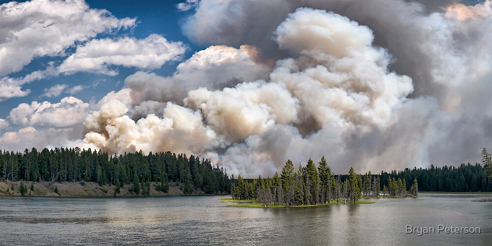 LeHardy Fire, Yellowstone National Park by Bryan Peterson