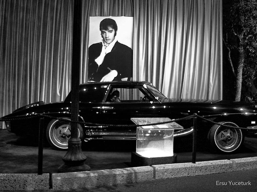 Elvis Speed Racer by Ersu Yuceturk