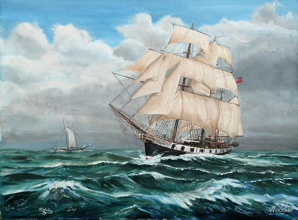 HMS Beagle, Darwin's Ship 1831/6 by Woodie