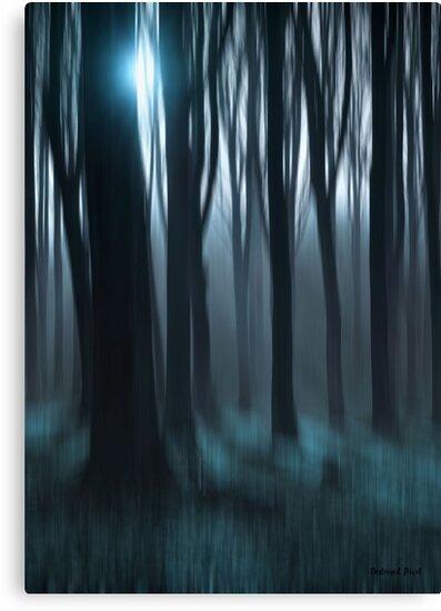 Dark Forest by Destroyed-Pixel