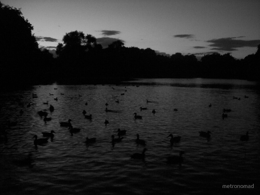The Pond II by metronomad