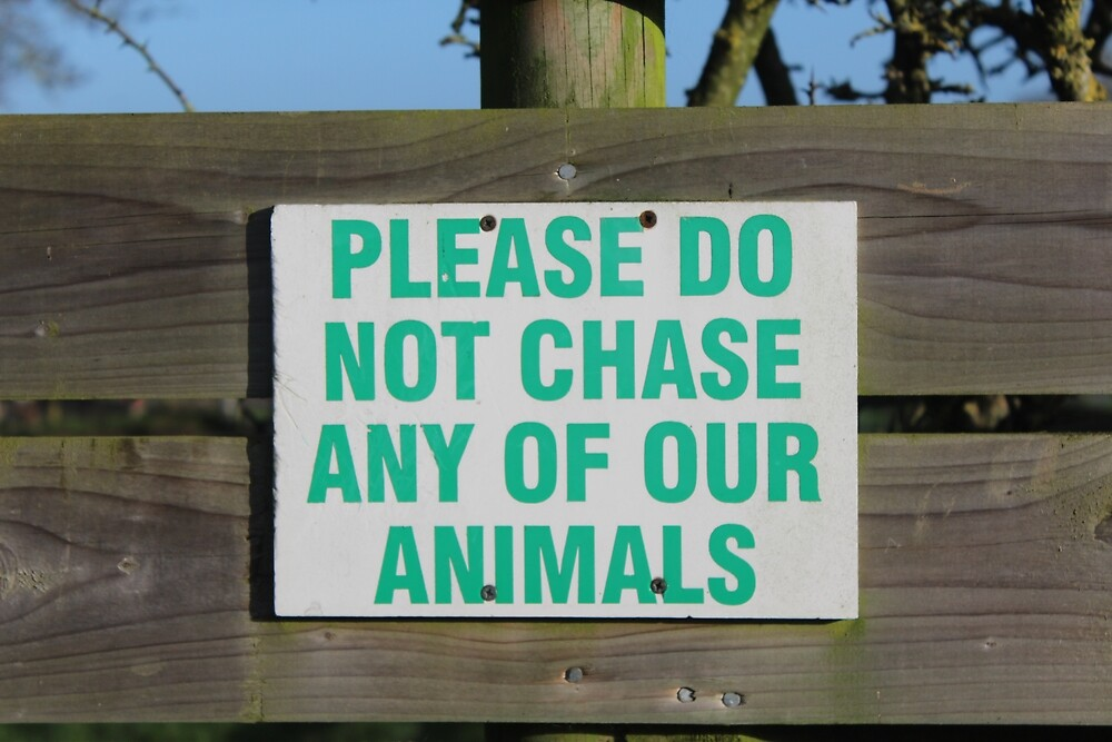 Please Do Not Chase Any of our Animals by Megan Howdle