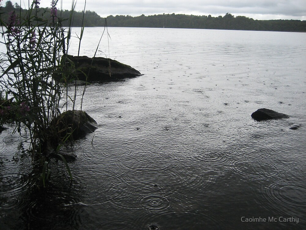 Irish Summer by Caoimhe Mc Carthy