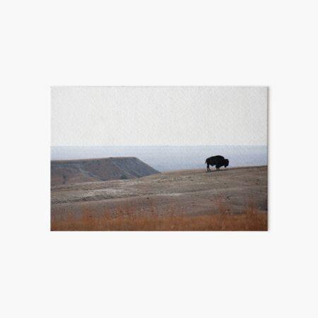 Bison Alone Art Board Print