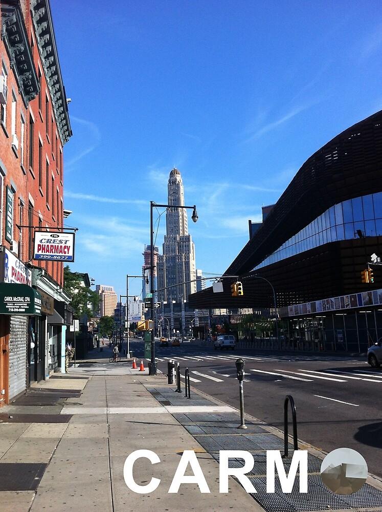 Culturedarm CARM Flatbush Avenue by culturedarm