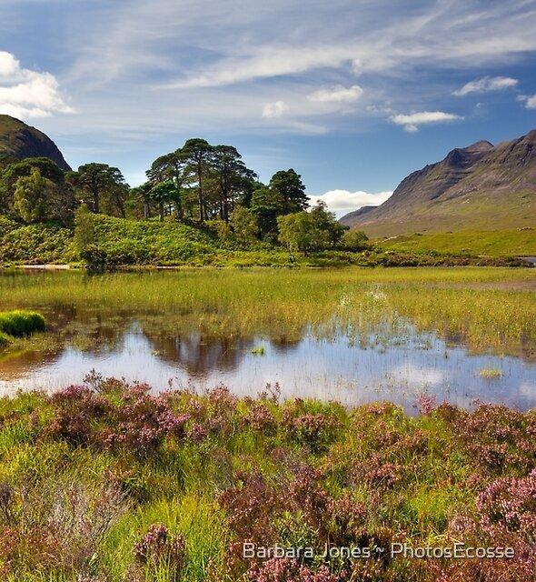 Liathach . Loch Clair. Torridon. Scottish Highlands. by Barbara  Jones ~ PhotosEcosse
