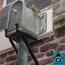 LookUp Haarlem - Little Sparrow by Stayf