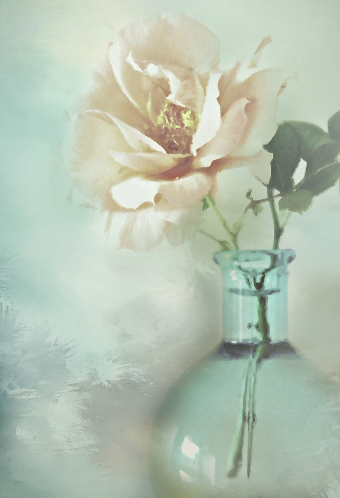 Antique Rose by CJ Anderson
