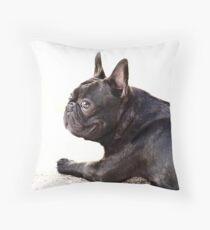 Cojín bulldog francés