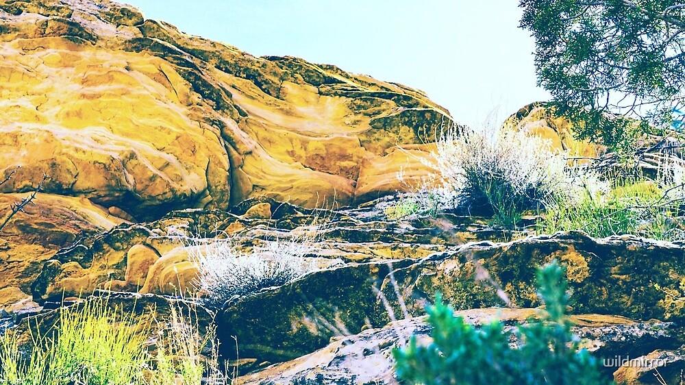 The Majestic Desert by wildmirror