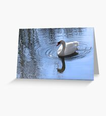 Swan And Ripples Greeting Card