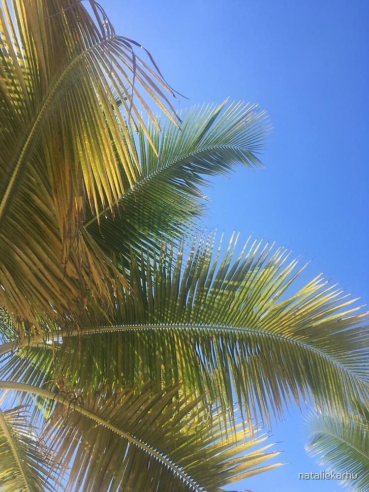 Punta Cana Paradise by nataliekarhu