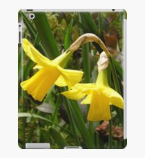 Sunshine - Yellow Daffodil iPad Case/Skin