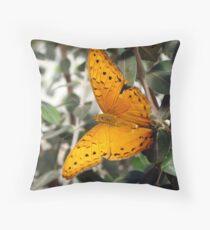 Vindula arsinoe Butterfly - Quindalup Butterfly & Fauna Park W.A. Throw Pillow