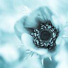 Ein bisschen blau von Caitlyn Grasso