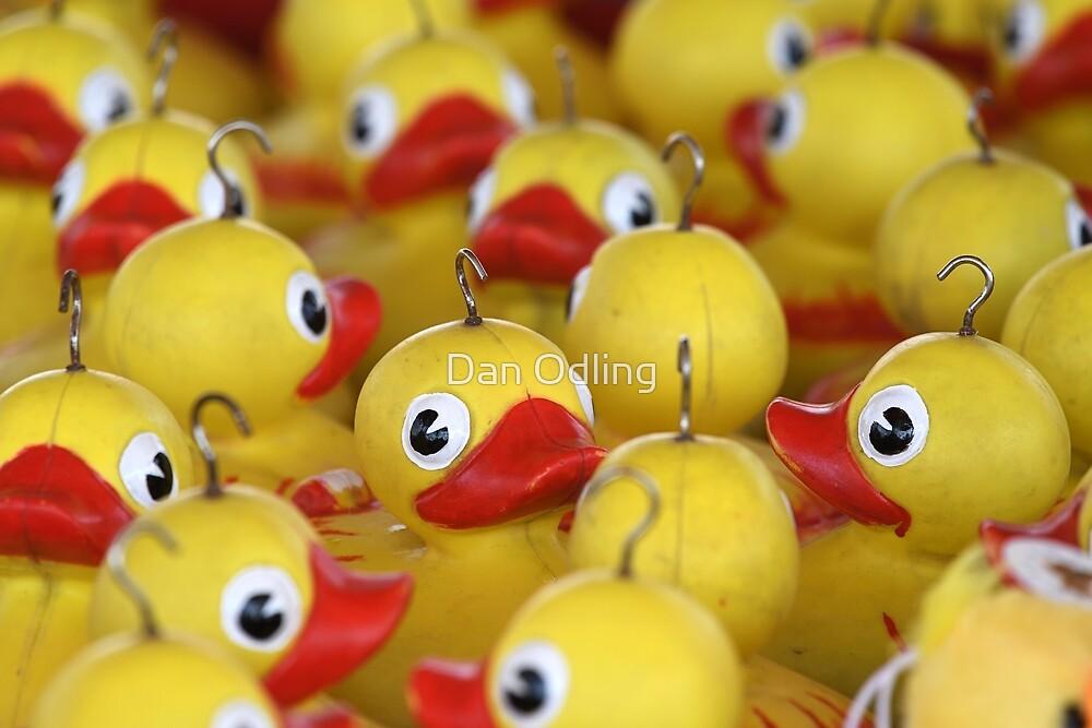 Hook a Duck by Dan Odling
