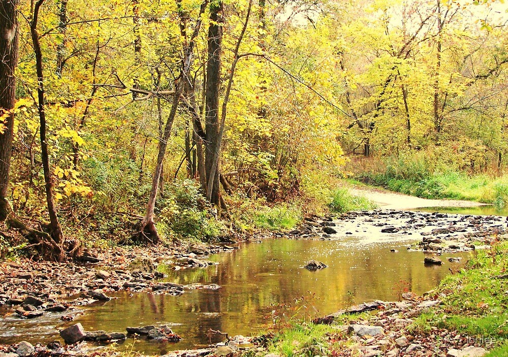 Autumn at Otter Creek  by lorilee