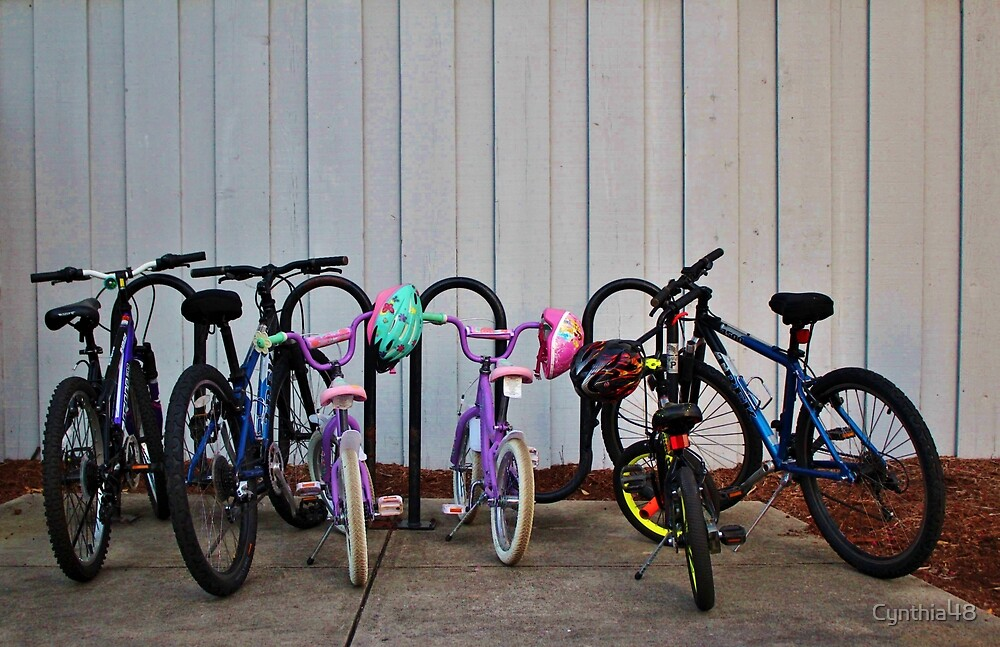 Family Bicycles by Cynthia48