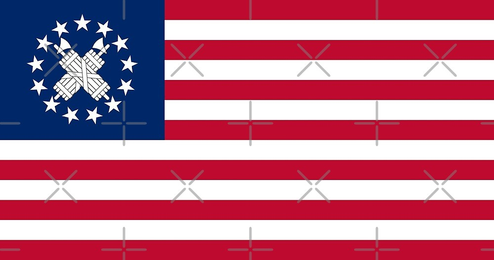 Nationalist US Flag by Rloth