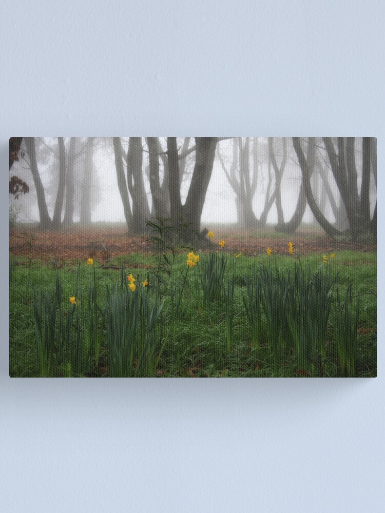 Alternate view of Winter daffodils Canvas Print