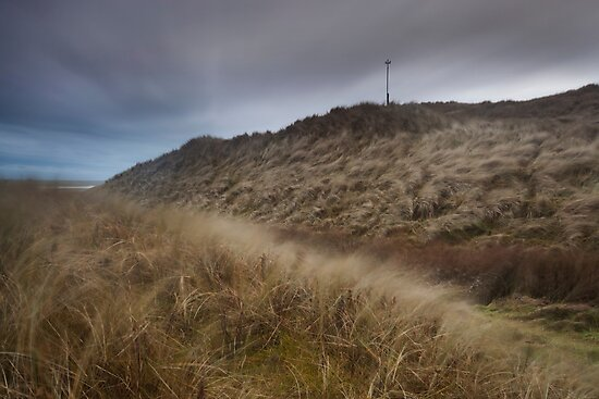 winter winds, forvie sands by codaimages