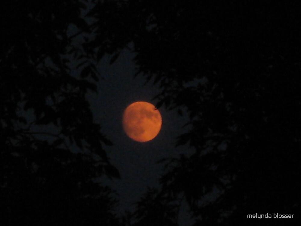full moon (harvest moon) by melynda blosser