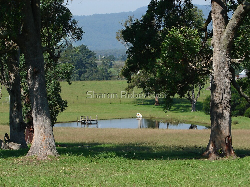 Country Dam by Sharon Robertson