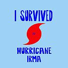 I Survived Hurricane Irma by FrankieCat