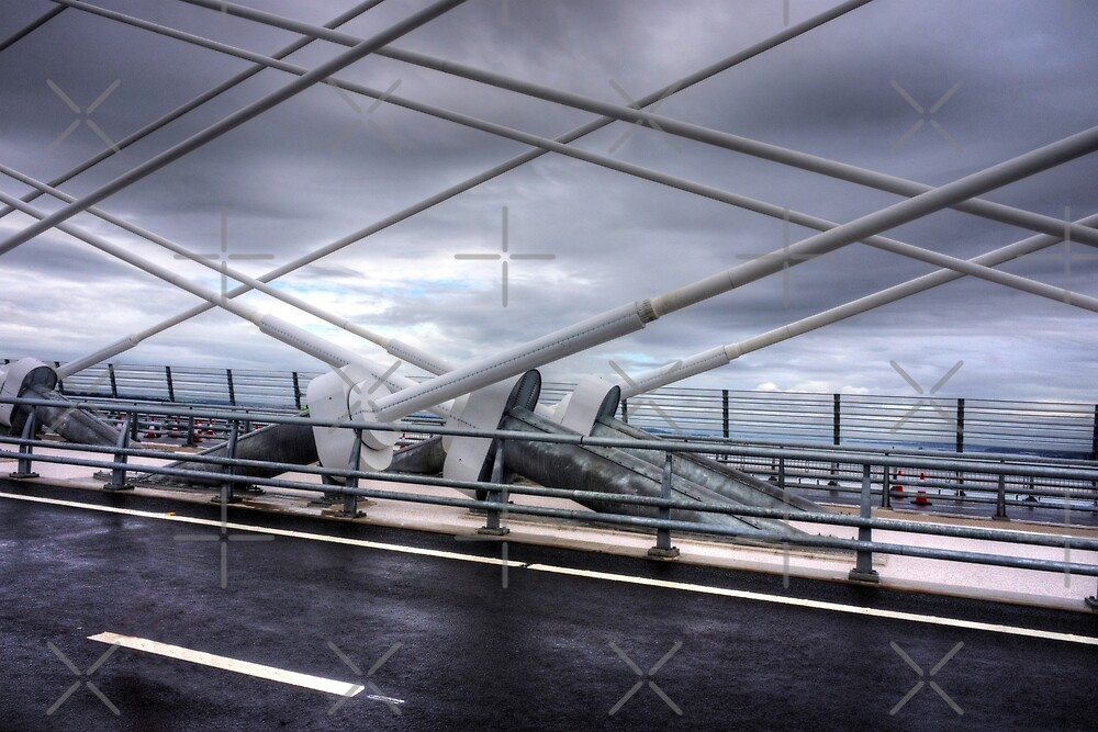 Cable Stays on the Queensferry Crossing by Tom Gomez