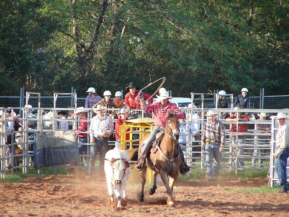 Rodeo Roping by Sharon Robertson
