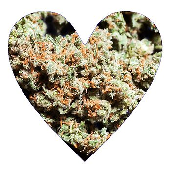 Bud Love by jsivart
