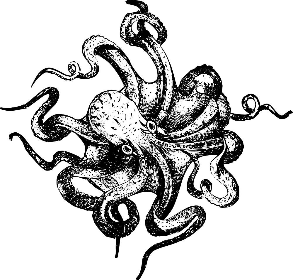 Octopuss by cupcaek