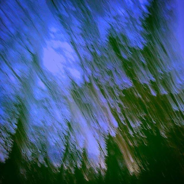 Acid Trees by JollyGrapefruit