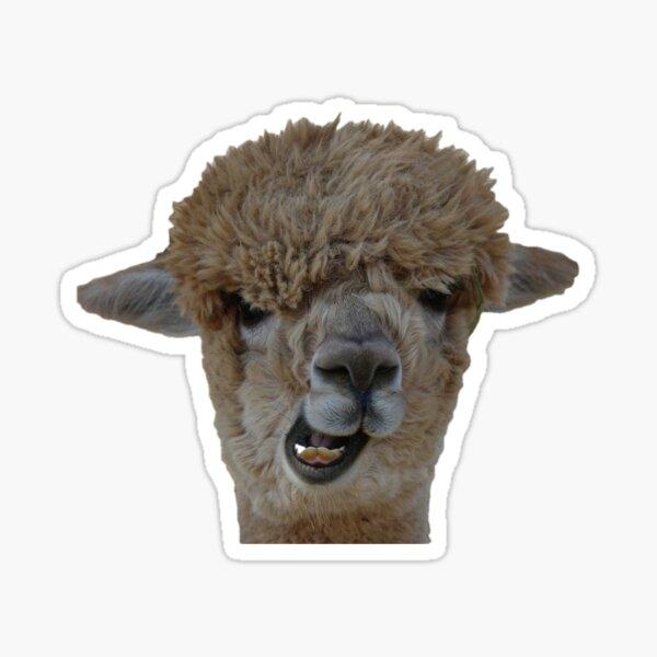 Goofy Alpaca Pegatina