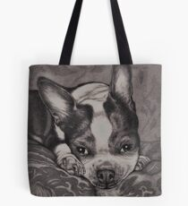 Dear Old Boston on Her Pillows Tote Bag