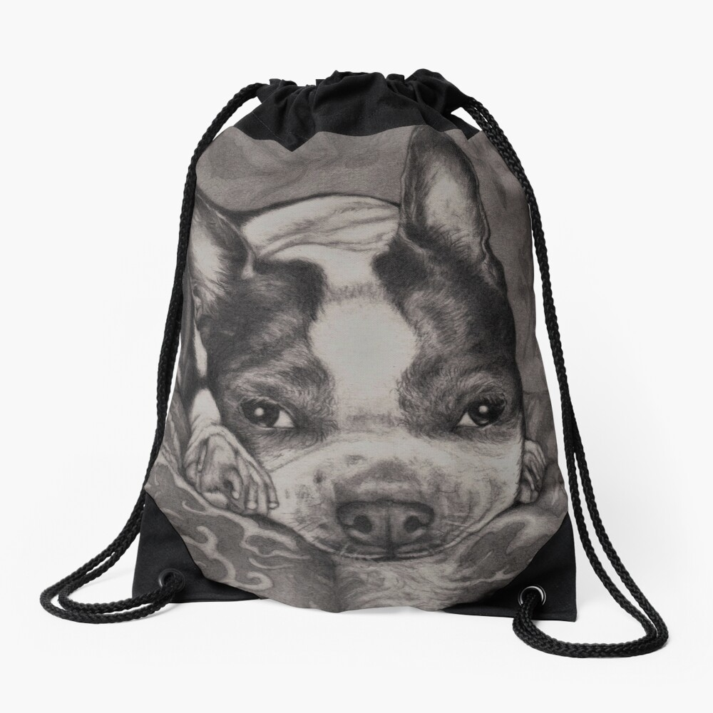 Dear Old Boston on Her Pillows Drawstring Bag Front