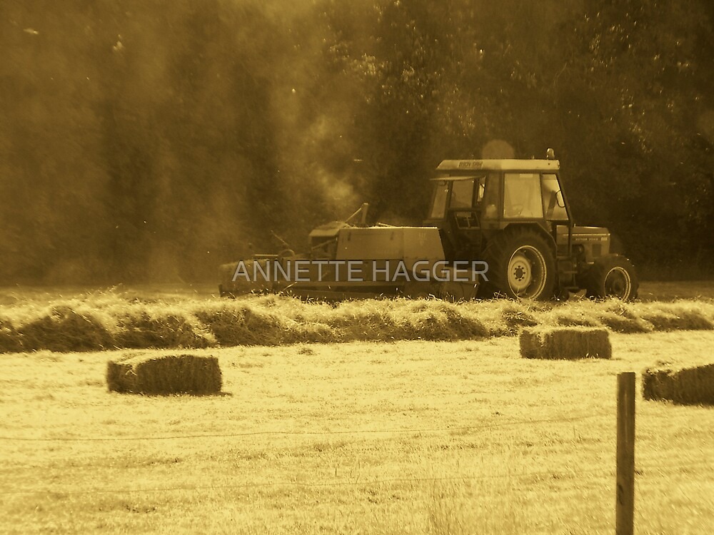 Early Morning Harvesting  by ANNETTE HAGGER