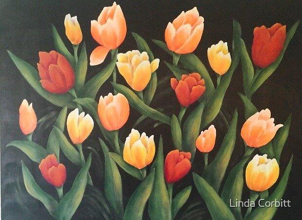 Field of Tulips by Linda Corbitt