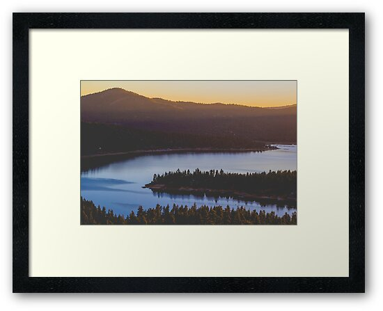 MINDS IN NATURE|MODERN PRINTING|1 Pc #28001587 by happyhouzz