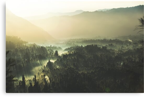 MINDS IN NATURE|MODERN PRINTING|1 Pc #28001652 by happyhouzz