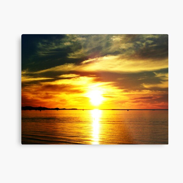 Natures Finest #6 (Enriched) Metal Print