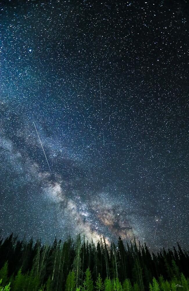 Milky Way Rabbit Ears  by amelia-b
