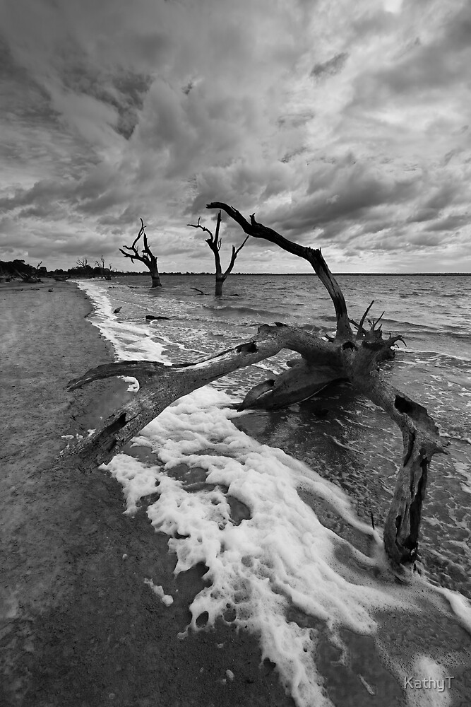 Troubled Waters by KathyT
