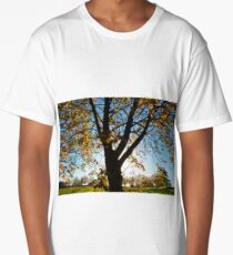 Sunny Nature Trees Long T-Shirt