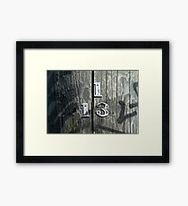 Lucky Fraction  Framed Print