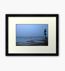 Lone Tree at Moultrie Lake, South Carolina Framed Print