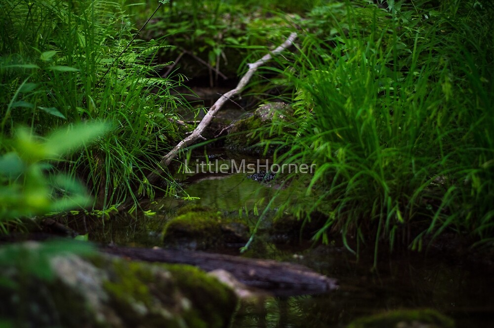 Leaning Log Over a Creek by LittleMsHorner