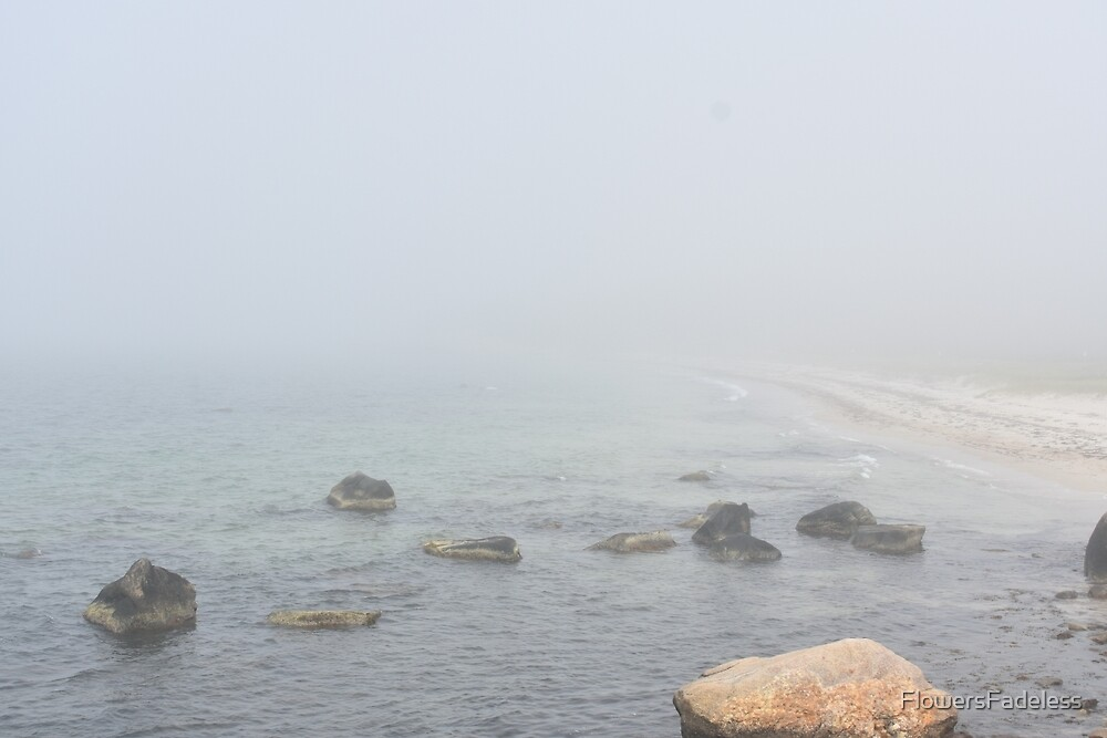 Foggy Ocean View by FlowersFadeless