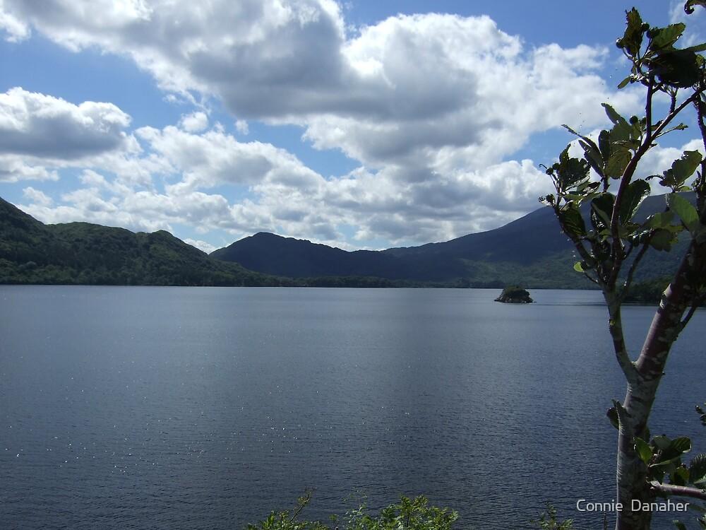 Killarney Lake by Connie  Danaher