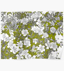 Flowers - White Poster